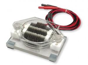Petri Dish Electrode